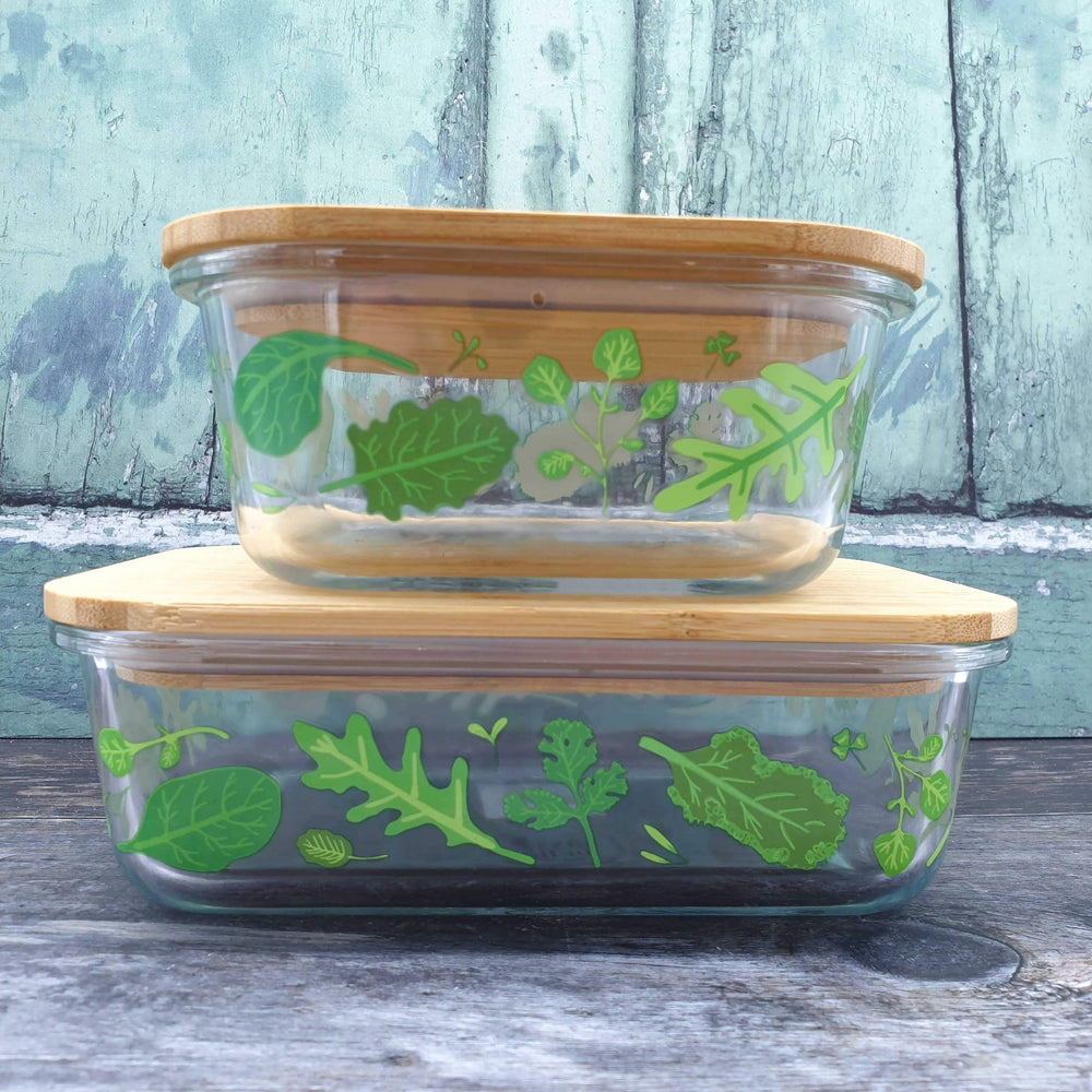 Powered By Plants Glass Storage Box Small Sass & Belle - Vera-Bee
