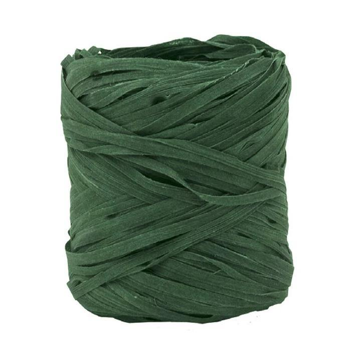 Natural Raffia Ribbon in Green - Go Green