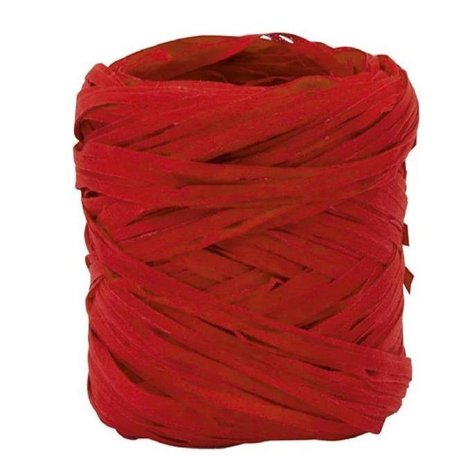 Natural Raffia Ribbon in Red - Go Green