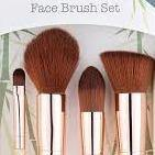 Face Makeup Brush Set - So Eco - Vera-Bee Limited