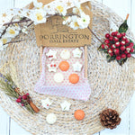 Christmas Botanical Soy Wax Melts Selection Box - Limited Edition