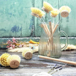 Wooden Dish Brush with Natural Bristle Replaceable Head