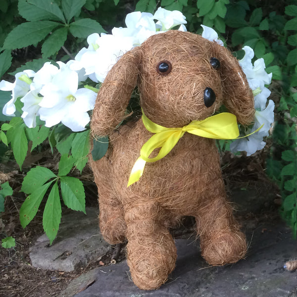 'Daisy' Topiary Coco Puppy Planter (without plants)