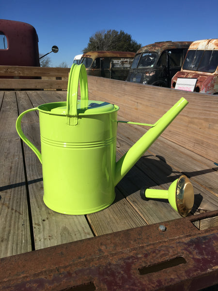Classic European 2 gallon Garden Watering Can  LIMITED TIME SPECIAL PRICE FOR AUSTIN SALES