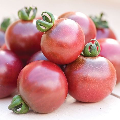 Rosella Purple Tomato 1g.      Indeterminate but 3'-4' tall plants
