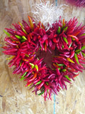NEW Pre-Order Pequin Corazon (Heart) Multi-Color for Pick Up at a Flash Garden