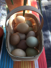 A Dozen Yard Eggs from The Chicken Ranch @ Rocky Creek Ranch Hye, TX