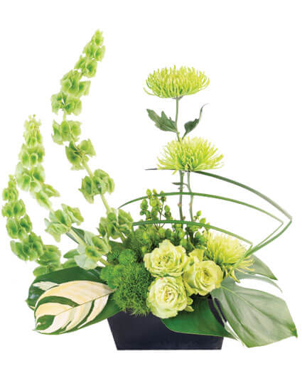 Lovely Lime Floral Arrangement