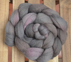 Purple Martin - BFL roving