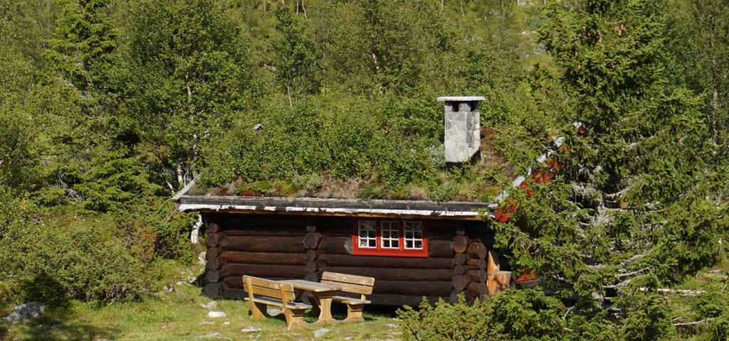 log cabin with green roof in Norway