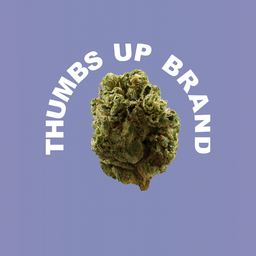 Bud surrounded by the Thumbs Up Brand logo