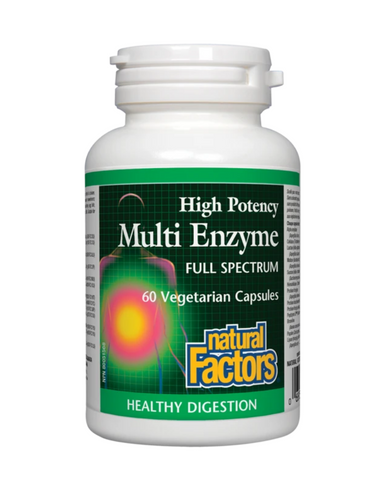 Natural Factors - High Potency Multi Enzyme