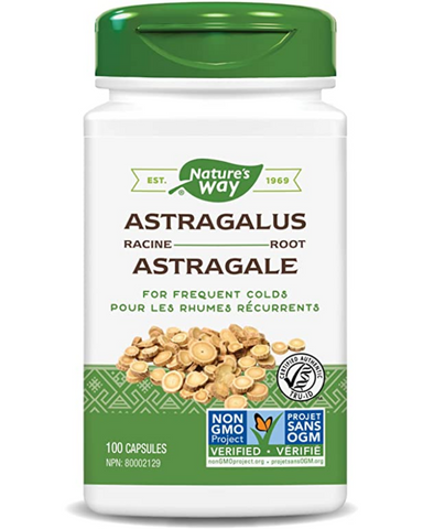 "Astragalus is considered to have a normalizing effect on body functions. It is harvested wild in Northern China and Mongolia. Early Chinese writings refer to Astragalus as ""The Superior Tonic"". It ranks as one of China's most important herbal medicines.  Astragalus is traditionally used to tonify lungs and for frequent colds."