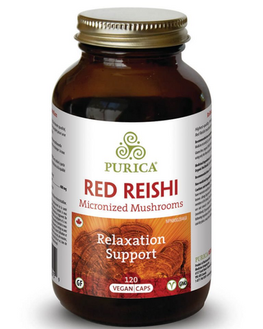 Since ancient times, Red Reishi was reserved for emperors and royalty and has long been used in Asia as an energy tonic to promote longevity and overall health. A much revered mushroom, Red Reishi is now recognized as a powerful adaptogen and immunomodulator that can bring about enhanced balance and rejuvenation of the body.  PURICA Red Reishi is a Full Spectrum lab-grown product, including mycelium, fruitbody, spores, primordial and extra cellular compounds.  Red Reishi rejuvenates the body therefore brin