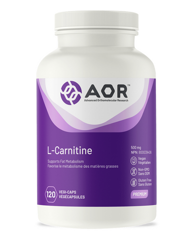 L-Carnitine is an amino acid needed for fat burning, energy production and muscle recovery. It is synthesized by the body from the essential amino acids lysine and methionine, and can also be obtained from red meat. For this reason, L-carnitine deficiency is quite common among vegetarians and even health-conscious people who simply avoid red meat.