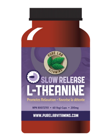 "L-Theanine can have a direct influence on our brains, increasing so-called Alpha Brain Waves, which are only present when we are alert and relaxed.  It helps regulate calming neurotransmitters, dopamine, serotonin and GABA – and simultaneously inhibits the effects of the ""stress hormone"" norepinephrine.  All this allows it to help improve mood, sleep and learning capacity, while reducing the feeling of being stressed."