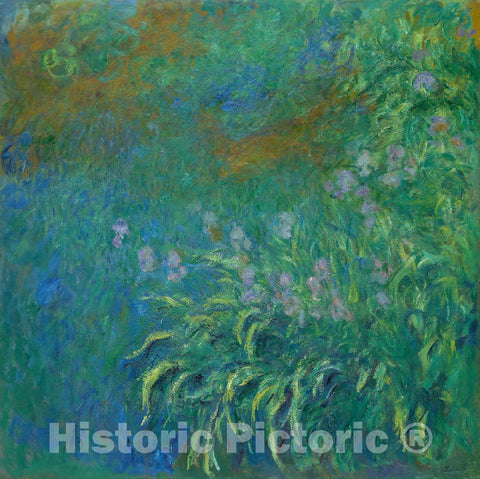 Art Print : Irises, Claude Monet, c 1920, Vintage Wall Decor :