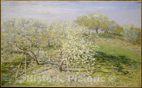 Art Print : Claude Monet - Spring (Fruit Trees in Bloom) : Vintage Wall Art