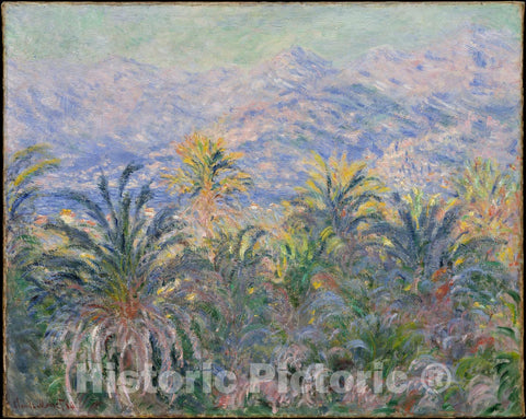 Art Print : Claude Monet - Palm Trees at Bordighera : Vintage Wall Art