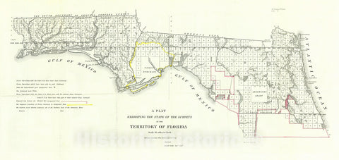 Historic Map : 1840 A Plat Exhibiting the State of the Surveys in the Territory of Florida : Vintage Wall Art