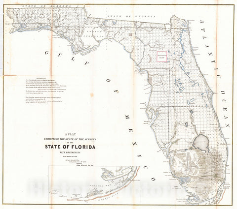 Historic Map : 1854 A Plat Exhibiting the State of the Surveys in the State of Florida : Vintage Wall Art