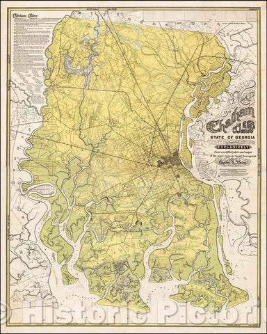 Historic Map - Map of Chatham County state of Georgia, 1875, Charles G. Platen - Vintage Wall Art