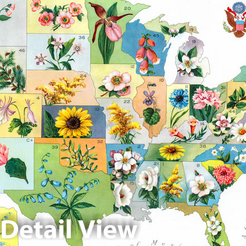 Historic Map : Our national bouquet. Copyright, 1911, by U.S. State Flower Map Co, Inc. Canby, Oregon. (inset) Alaska. - Vintage Wall Art