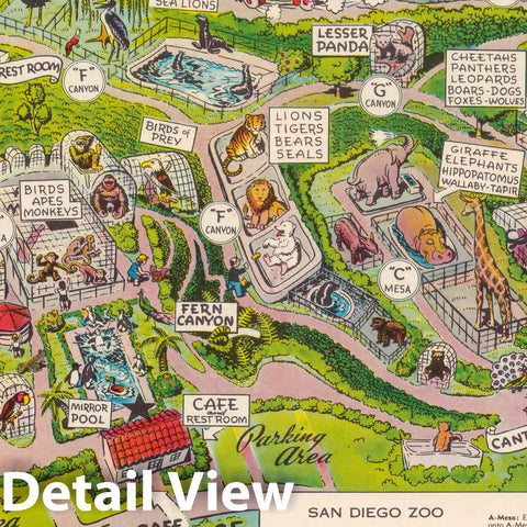 Historic Wall Map : San Diego Zoo. Copyright : Lowell E. Jones, 1947 Pictorial Map - Vintage Wall Art