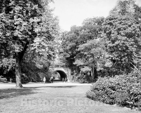 Historic Black & White Photo - Brooklyn, New York - Walking in Prospect Park, c1915 -