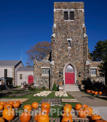 Photo - Fall White and Orange Pumpkins on Display in Portsmouth, New Hampshire- Fine Art Photo Reporduction