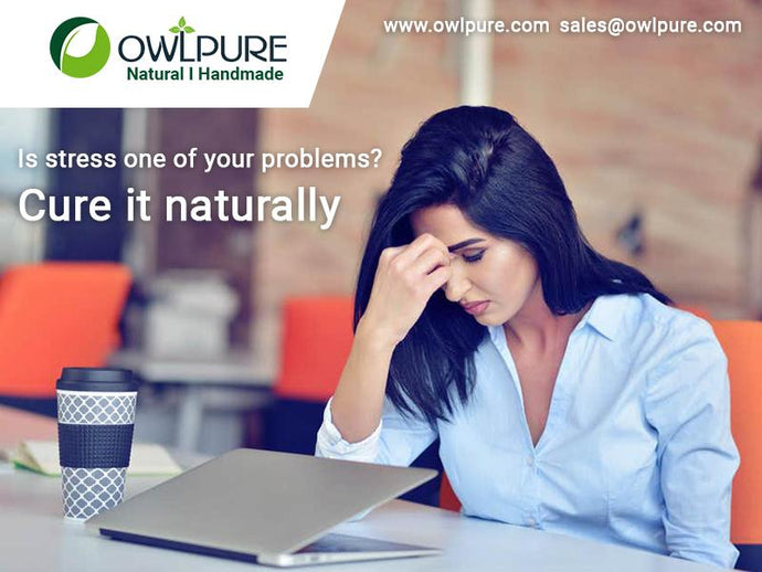 Is stress one of your problems? Cure it naturally