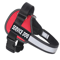 All In One No Pull Dog Harness - Pet Cache