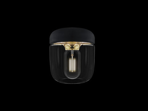 Acorn black | polished brass