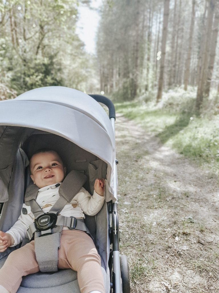 Paige Crowson & Rob Free's Armadillo Pushchair Review