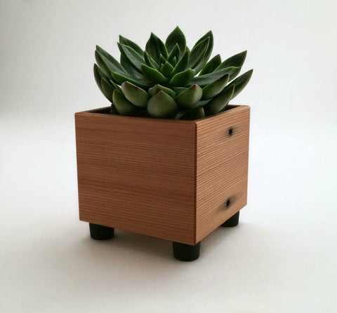 Cactus Planter, Cube Planter, For Cacti, Succulents, Grasses