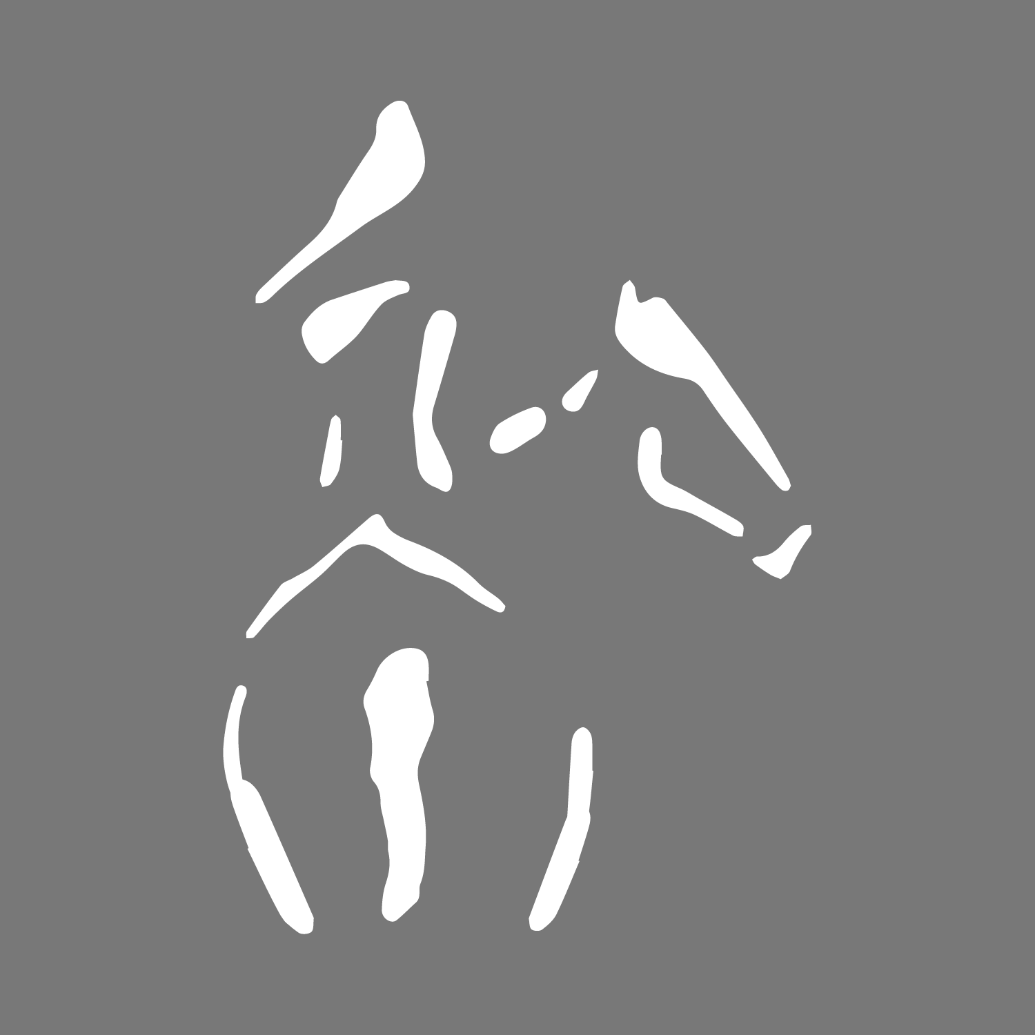 Horse Girl Car Sticker