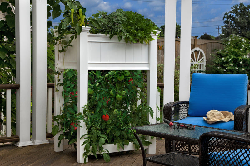 Urbanscape Elevated Tomato Garden