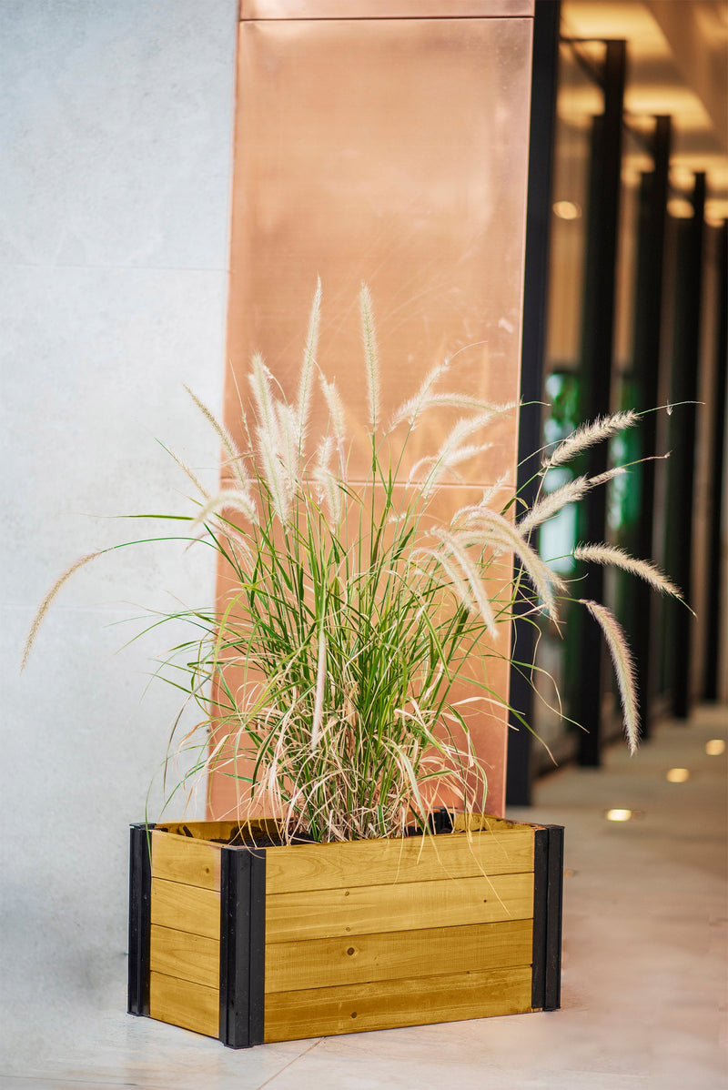 MEZZA 12x24 Planter