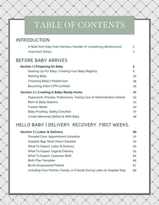 Expecting and Organized: Pregnancy & New Baby E-Planner