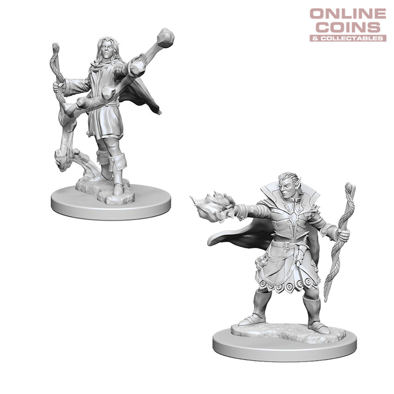 Pathfinder Deep Cuts Unpainted Miniatures Elf Male Sorcerer - WizKids