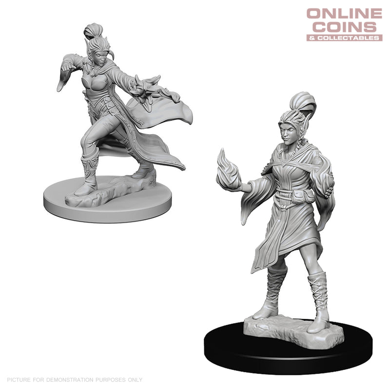Pathfinder Deep Cuts Unpainted Miniatures Elf Female Sorcerer - WizKids