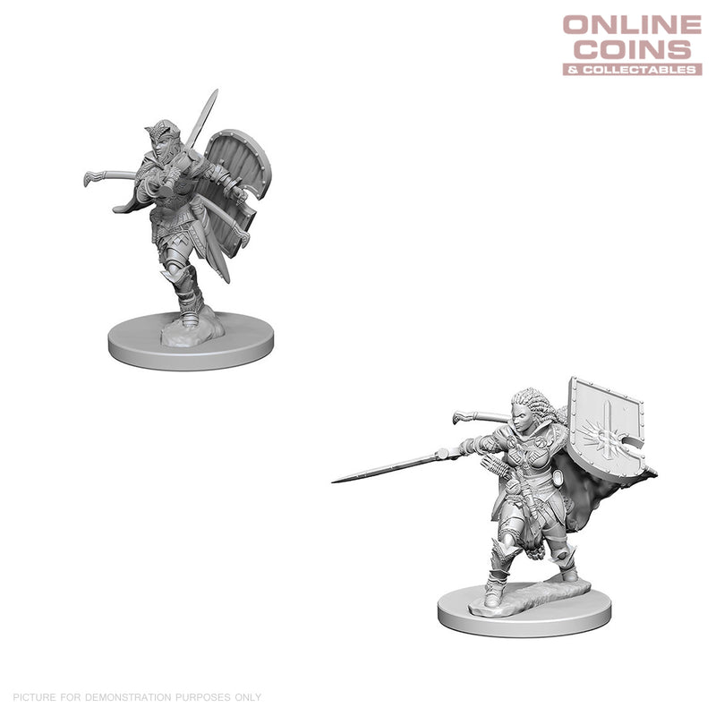 Pathfinder Deep Cuts Unpainted Miniatures Human Female Paladin - WizKids