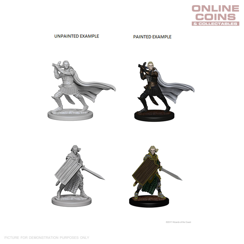 Pathfinder Deep Cuts Unpainted Miniatures Elf Male Paladin - WizKids