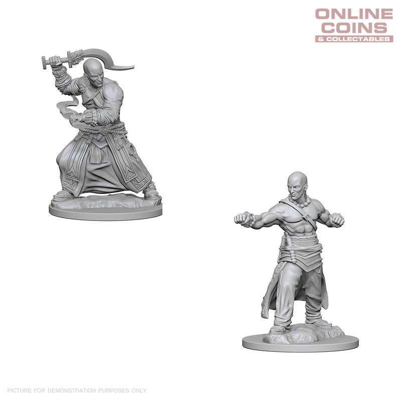 Pathfinder Deep Cuts Unpainted Miniatures Human Male Monk - WizKids