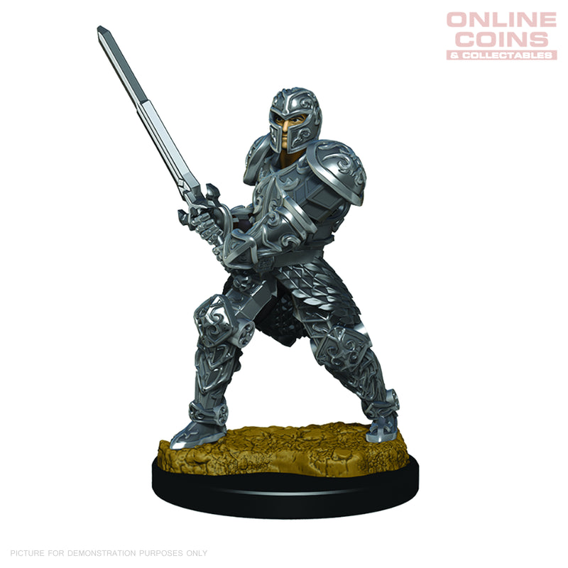 D&D Premium PAINTED Figures Male Human Fighter - WIZKIDS
