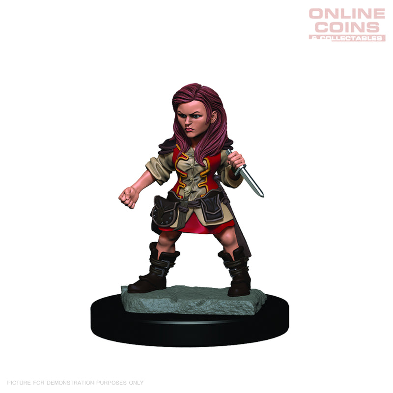 D&D Premium PAINTED Figures Halfling Female Rogue - WIZKIDS