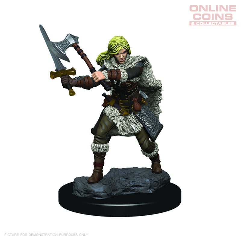 D&D Premium PAINTED Figures Human Female Barbarian - WIZKIDS