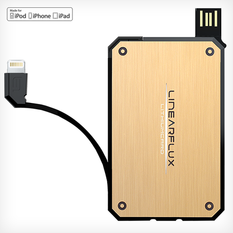 LithiumCard Original -  with Apple Lightning connector