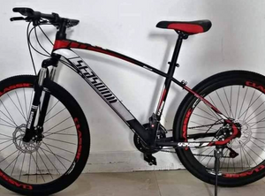 "Mountain Bike 26"" Seaswim"