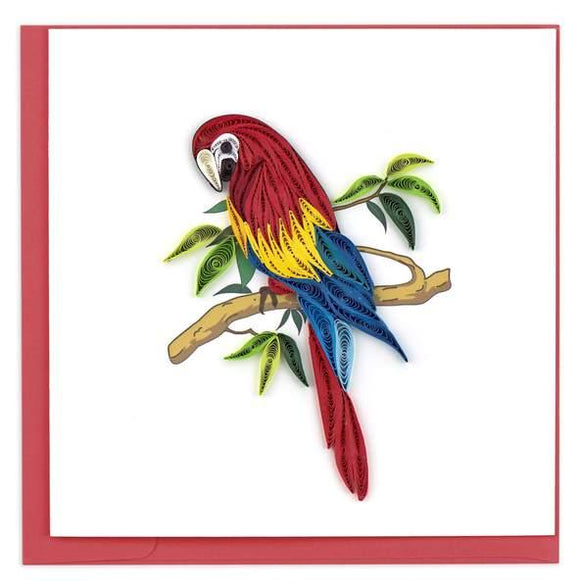 Quilled Parrot Greeting Card